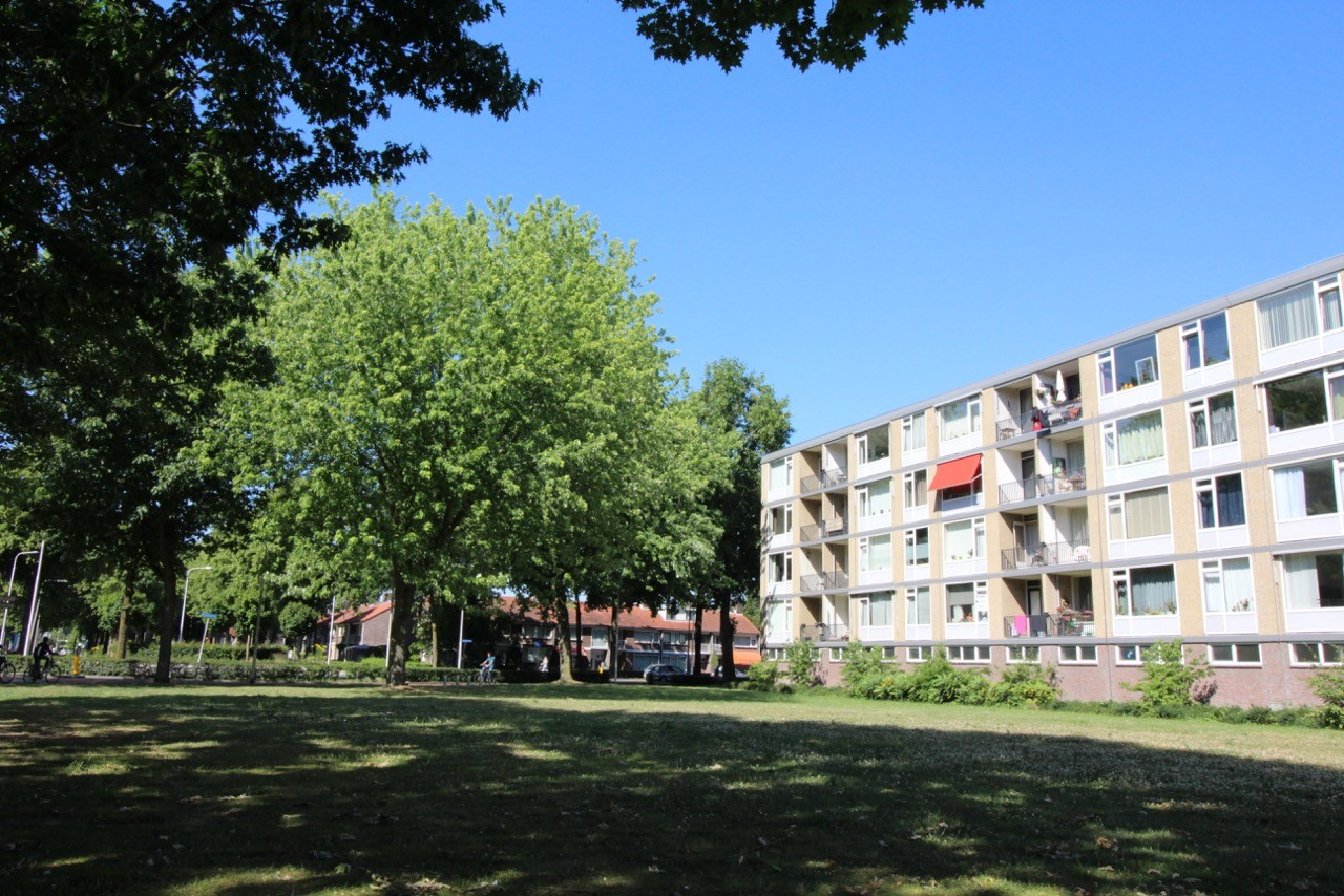 Van Maarseveenstraat